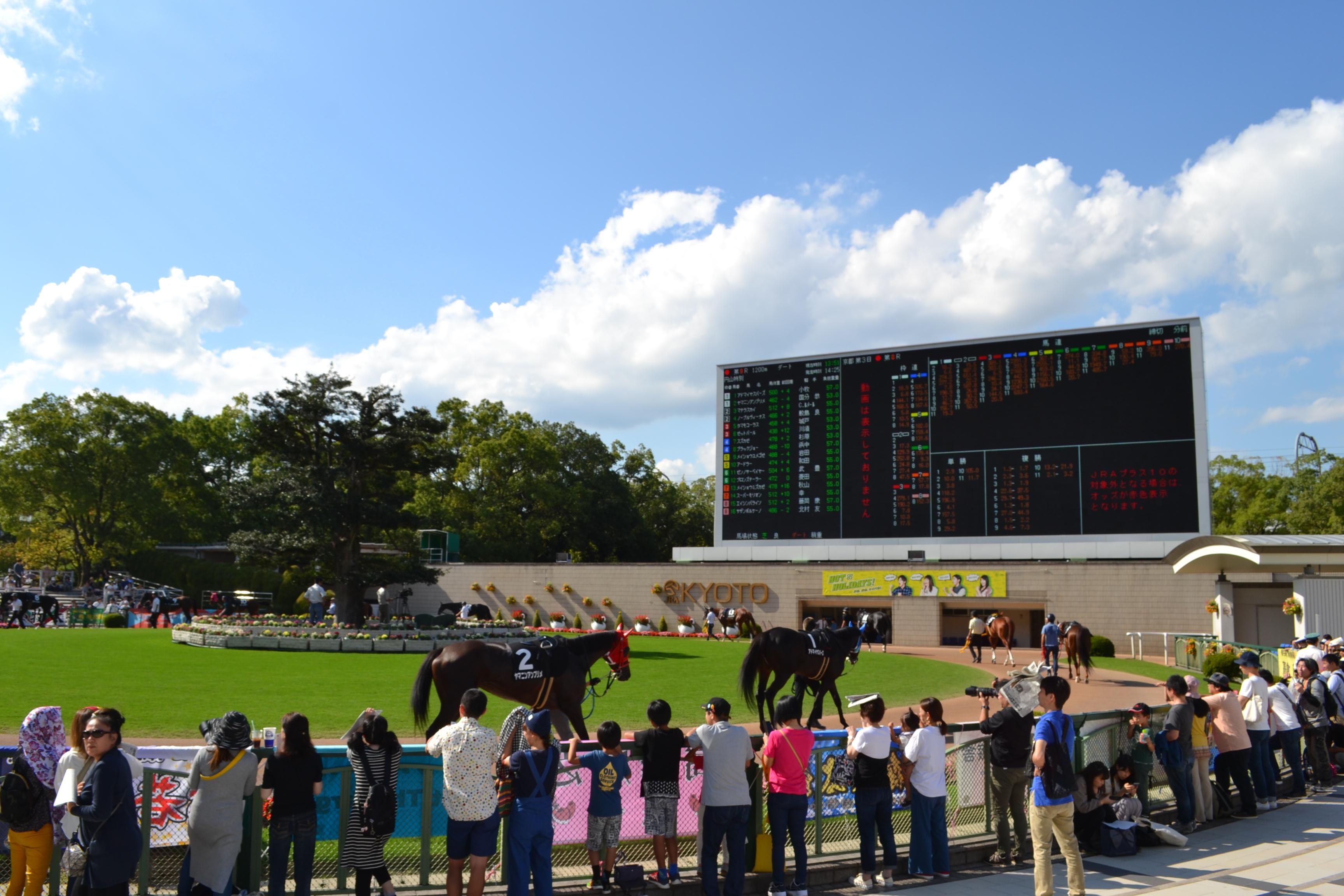 行ってきました④「京都競馬場」